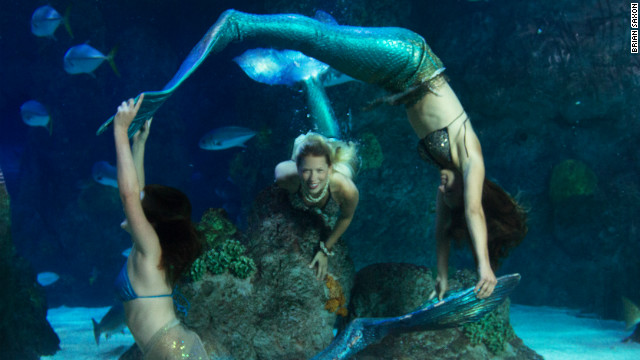 The Aquarium at the Silverton