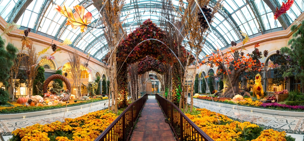 Bellagio Conservatory Botanical Gardens Welcomes Fall