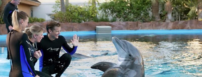 Secret-Garden-Dolphin-Habitat-at-The-Mirage