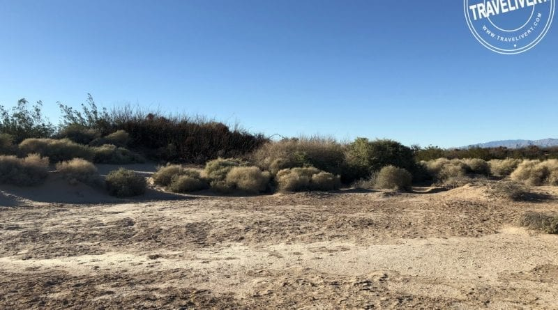 Dunes Discovery Area at Sunset Park
