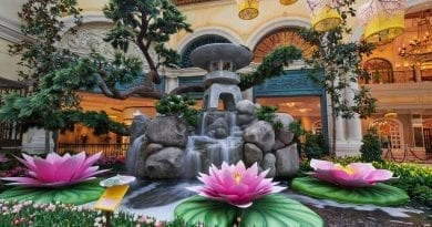 Bellagio Conservatory & Botanical Gardens - 2018 Japanese Spring Display