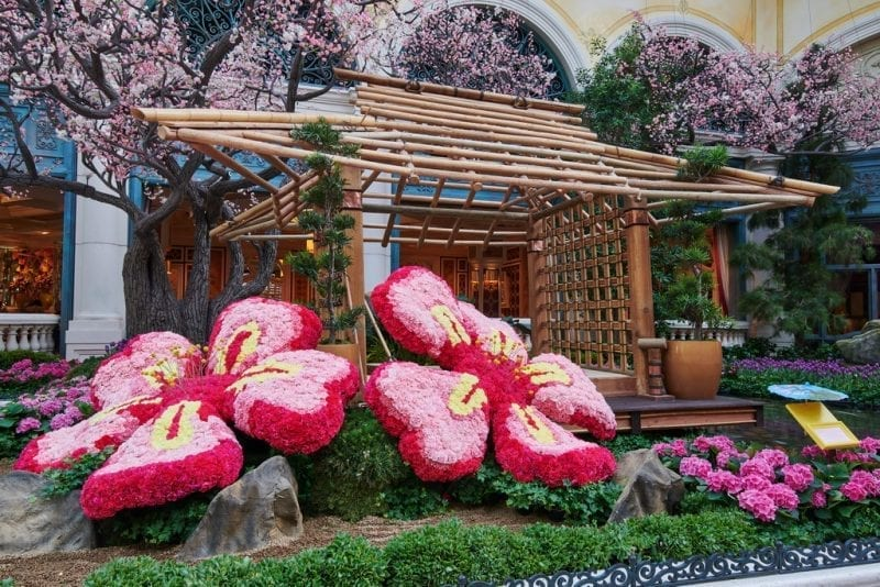 Bellagio Conservatory & Botanical Gardens - 2018 Japanese Spring Display