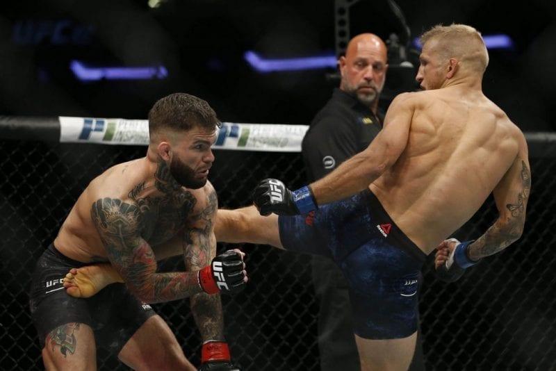 UFC 227 Dillashaw vs. Garbrandt