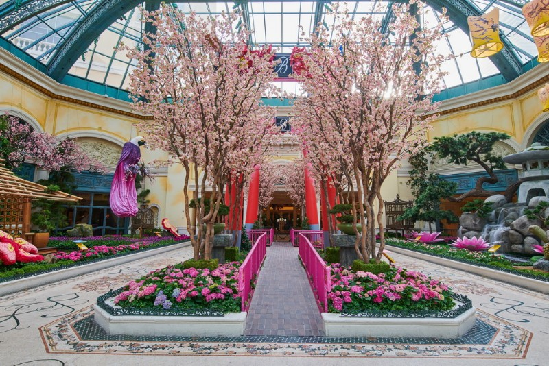 Bellagios-Conservatory-Botanical-Gardens-2018-Japanese-Spring-Display-04