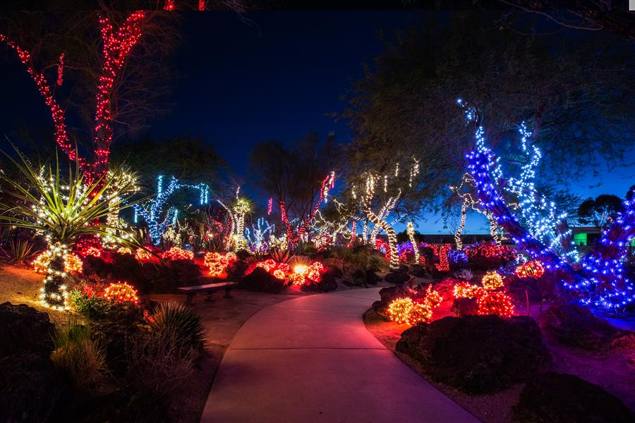 Annual Lights of Love Display at Ethel M Chocolates