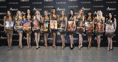 FANTASY Ladies of FANTASY 2019 Calendars