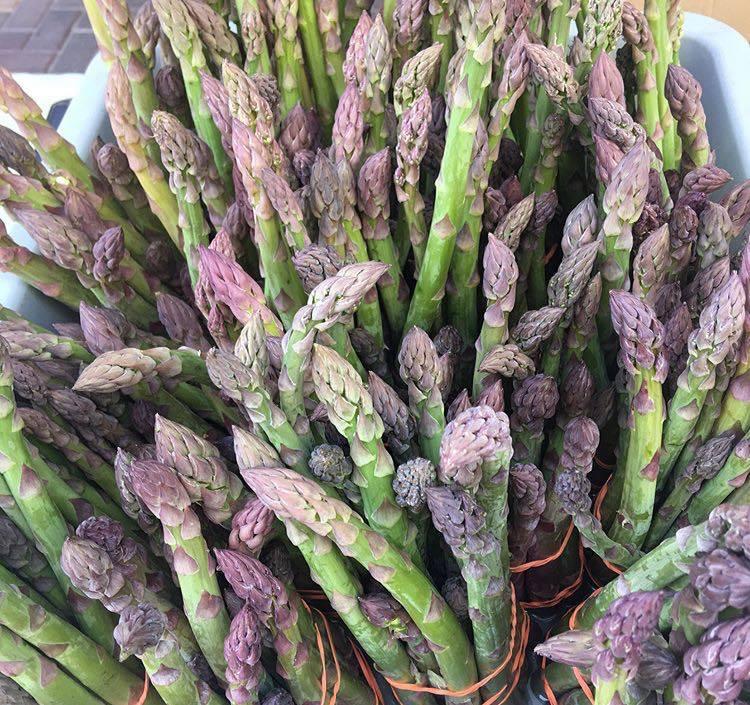 Asparagus at Fresh52