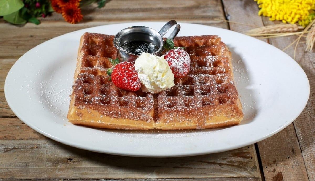 Hash House A Go Go - Churro Waffle