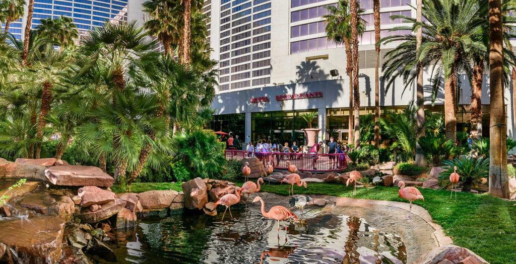 The Flamingo Wildlife Habitat 4 1024x525
